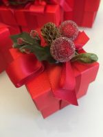 Red Berry Christmas Favours