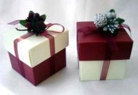 Christmas Favour Box with Berries