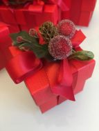 Red Berry Christmas Favour